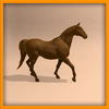 14 56 59 559 horse ani 0010 4