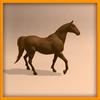 14 57 00 21 horse ani 0009 4