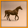 14 57 00 313 horse ani 0008 4