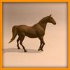 15 01 35 573 horse ani 0006 4