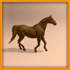 15 01 37 579 horse ani 0003 4