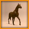 15 01 42 22 horse pic 0023 4