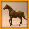 15 01 42 510 horse pic 0020 4