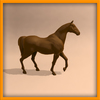 15 01 45 778 horse ani 0022 4