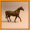 15 01 46 507 horse ani 0024 4