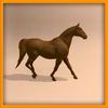 15 01 47 155 horse ani 0026 4