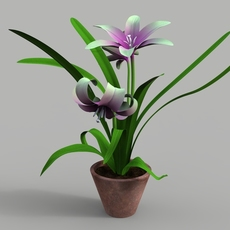 Flower plant with pod 3D Model