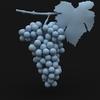 15 35 00 334 grapesr 08 4
