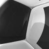 16 12 36 223 balon negroytriangulos 06 4
