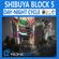 Tokyo Shibuya Block 5 3D Model