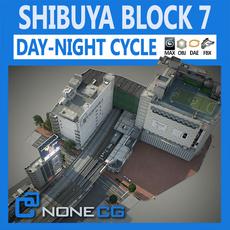 Tokyo Shibuya Block 7 3D Model