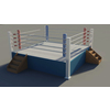 17 28 30 513 boxing ring 4