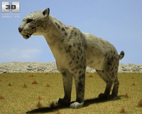 Homotherium 3D Model
