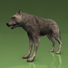 18 35 32 287 001 timberwolf1440 4