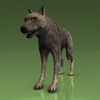 18 35 32 525 002 timberwolf1440 4