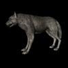 18 35 33 720 006 timberwolf1440 4
