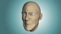 Free Head Base Mesh 3D Model