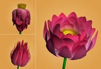 Free Lotus Flower 3D Model