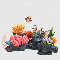 Coral_005 3D Model