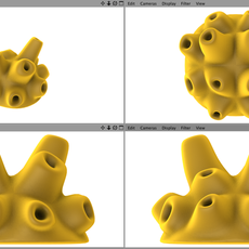 Demospongiae yellow sea sponge 3D Model