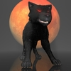 19 11 59 7 dwolf3bis 4