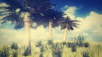 Free palm tree 3D Model