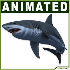White Shark CG 3D Model