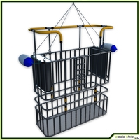 Cage Dive CG 3D Model