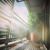 Scriptografix free 3d models for maya vray decking cover