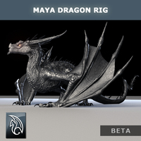 Dragon cover cover