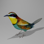 Beeeater r1 small