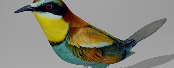 Beeeater r1 wide