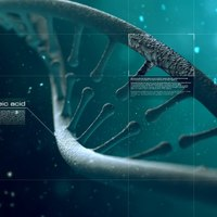 Dna ok cover