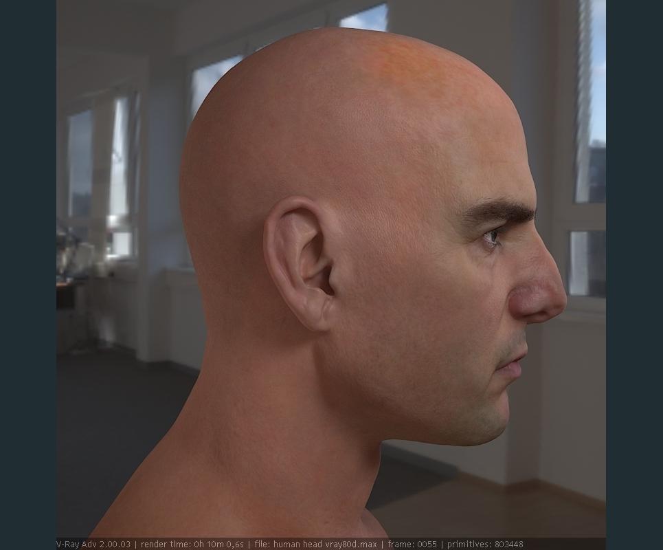 3d model tom cruise head 10 show