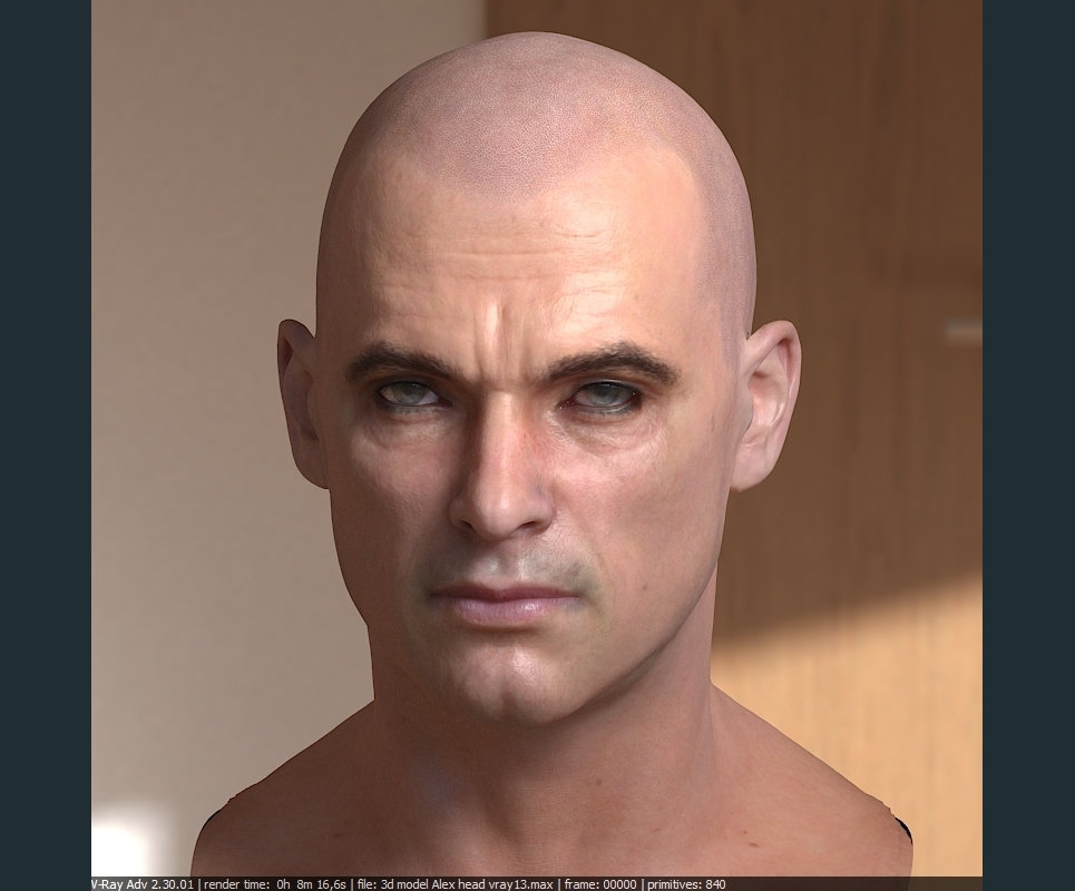 3d model human head male 1 show