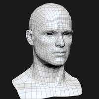 3d model human head male mesh cover