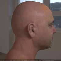 3d model realistic male human head 12 cover