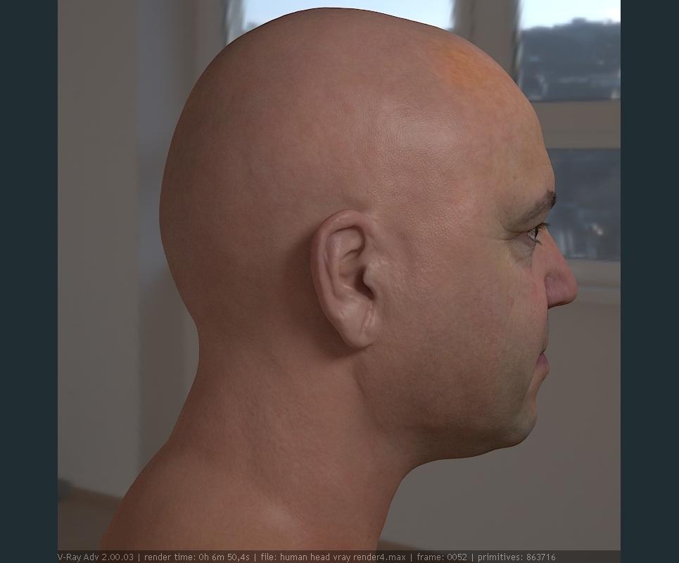 3d model realistic male human head 12 show