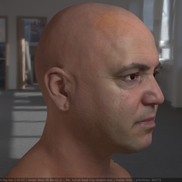 3d model realistic male human head 13 cover