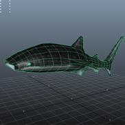 Whaleshark screenshot small