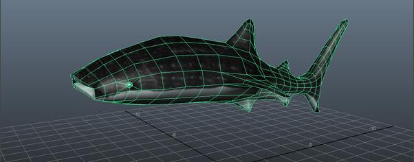 Whaleshark screenshot wide