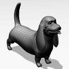03 52 07 215 basset hound w1 4
