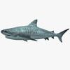 05 06 43 254 shark a 4