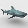 05 06 47 619 shark d 4