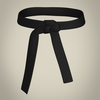 05 09 34 643 realistic male karate master 19 4