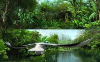Rainforest through the long lens 3D Model