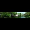 05 25 50 526 rainforest through the long lens 3 4