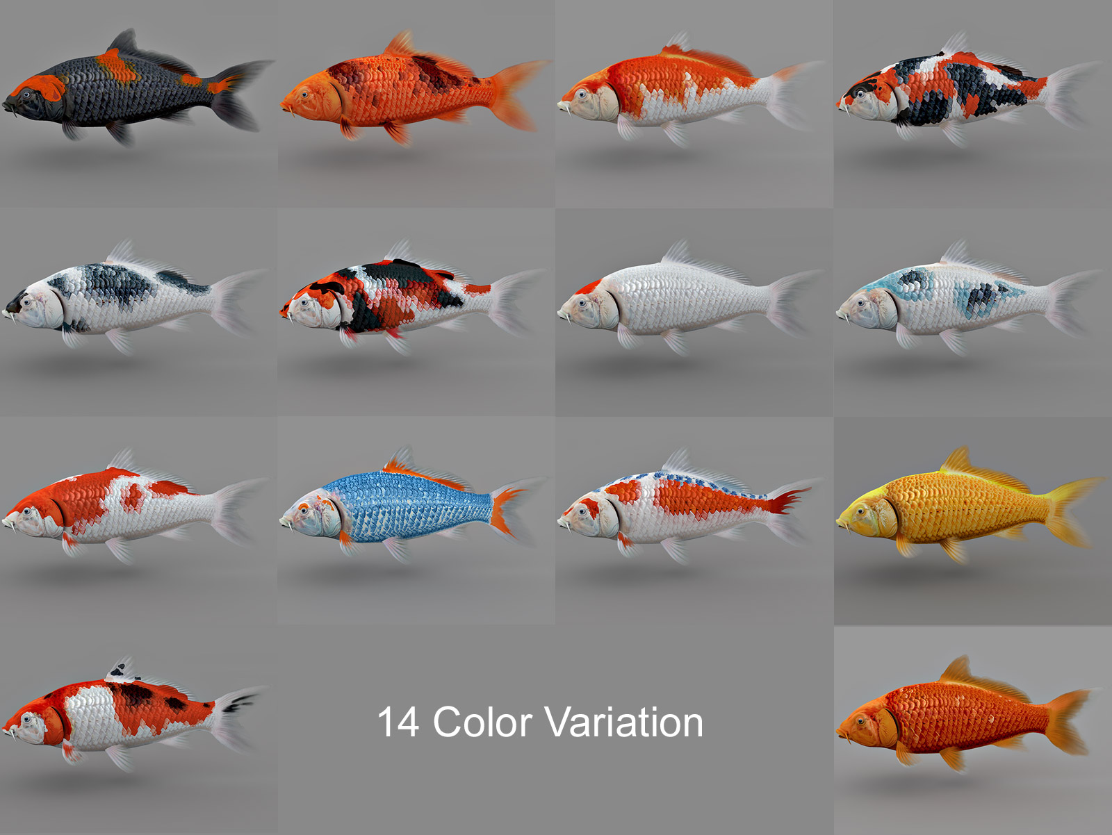 Koi Fish Collection 3d Model