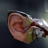 07 31 27 158 ear 2 4