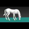 08 53 54 895 horse grass 4